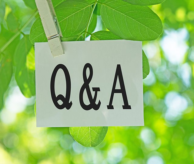 Q&A with Ece Ozdemiroglu, guest speaker at the UK Forest Market Review